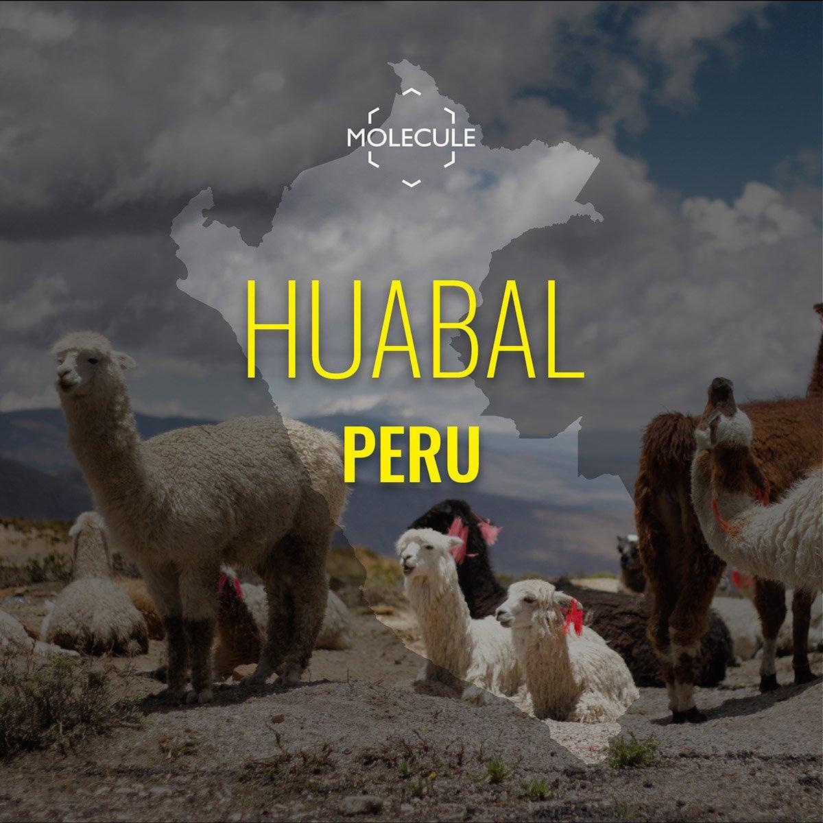 Huabal